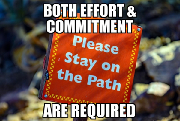 both effort and commitment are required