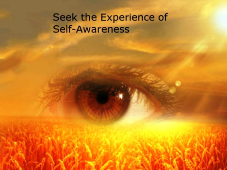 seek the experience of self-awareness