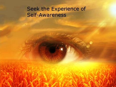 seek the experience of self-awareness