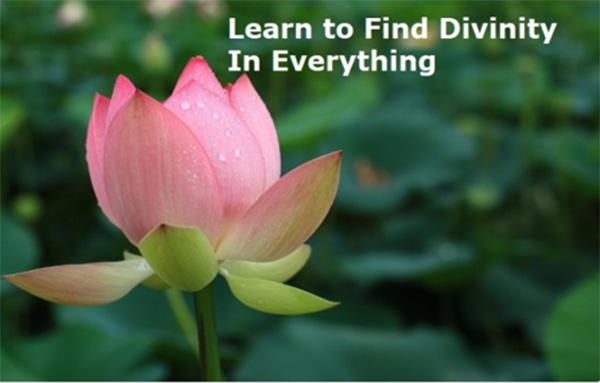 learn to find divinity in everything